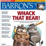 Whack that Bear!
