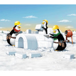 Penguins building an igloo