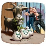 Goat and goodbye to your money